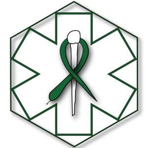code-green-logo